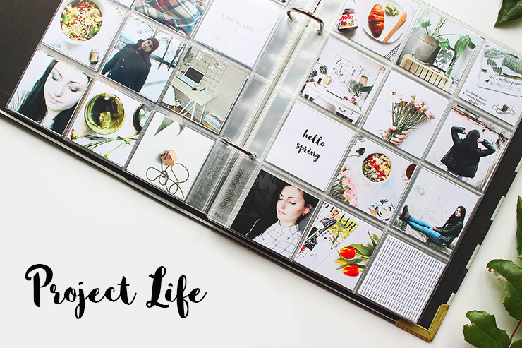 project life11